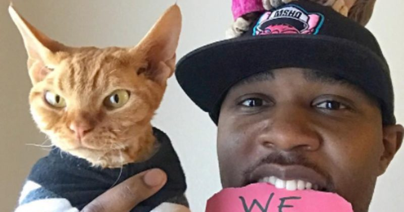 If You Have Feline Friends, You'll Definitely Fall In Love With 'The Cat Rapper'