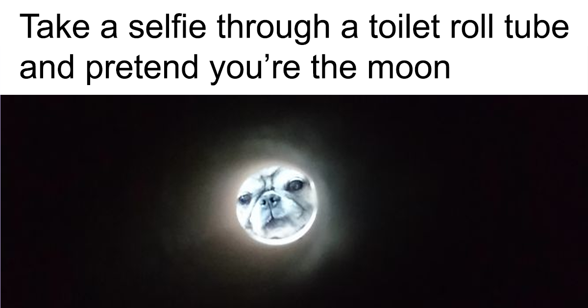 Apparently, If You Take A Selfie Through A Toilet Roll Tube You'll Look Like The Moon, And The Pics Are Mildly Funny